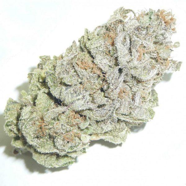 afgooey-marijuana-strain-1.jpg
