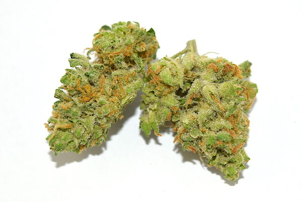 island-sweet-skunk-cannabis-strain-review.jpg