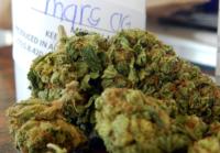 mars-og-marijuana-strain-3.png