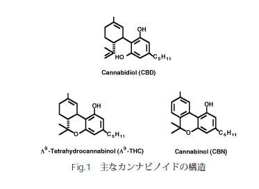 cannnabinoid