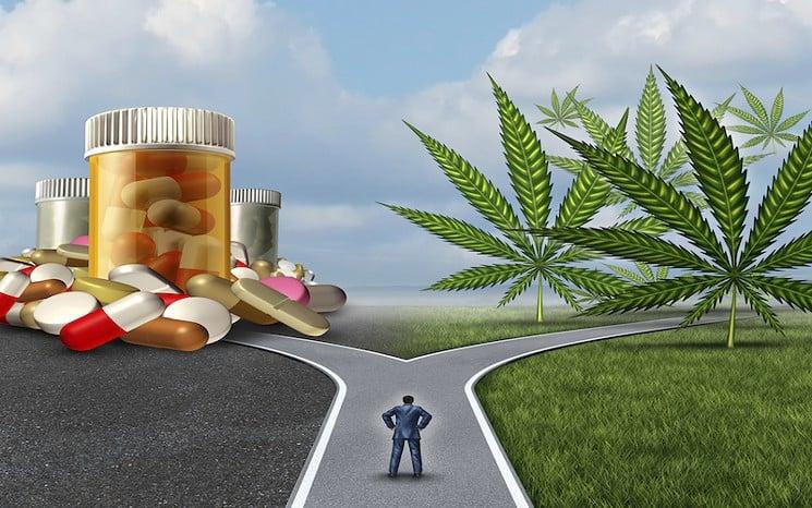 あなたが知っておくべき事実!大麻と処方薬どちらを選ぶ?