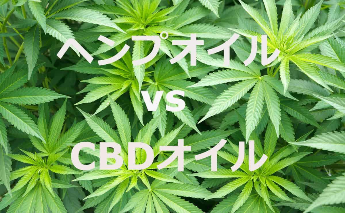 混乱ポイント!ヘンプオイル vs CBDオイル 結局、違いは何なの?