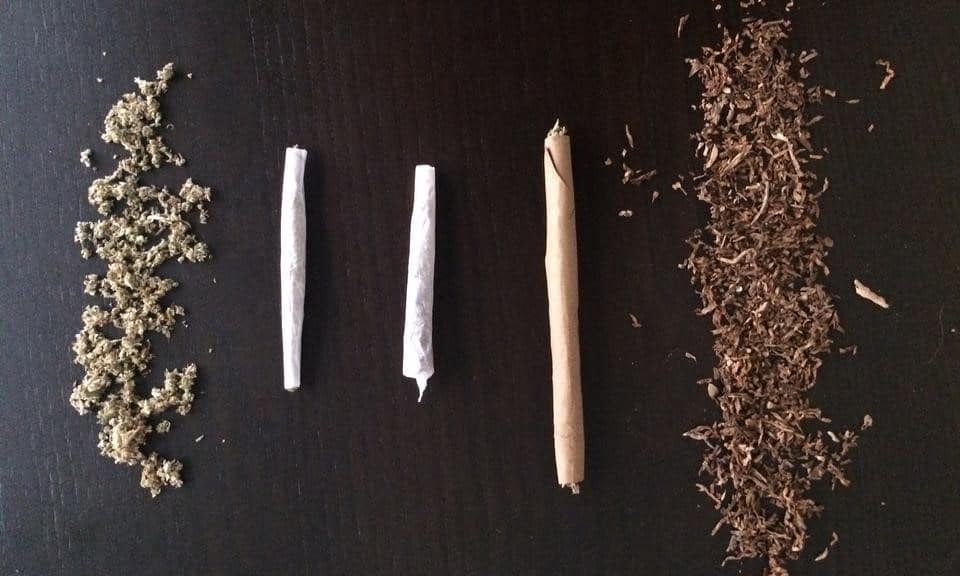 whats-the-difference-between-joints-blunts-and-spliffs