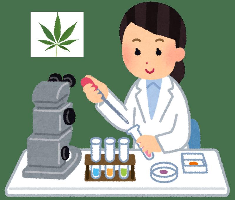 薬物検査:THCは体内のシステムにどれくらい残るの?