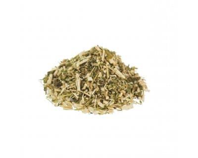marihuanilla-herb