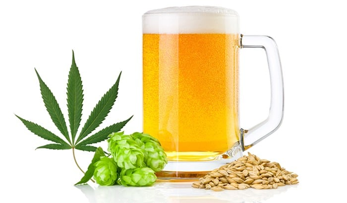 【大麻麦酒】マリファナをビールに注入する方法