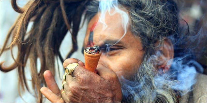 【大麻】カンナビス、マリファナ、ガンジャ、ウィード 名前はどこから来た?