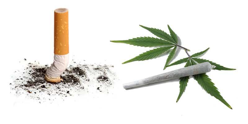 大麻喫煙(マリファナ)vs  煙草喫煙(タバコ)「悪いのはどっち?」