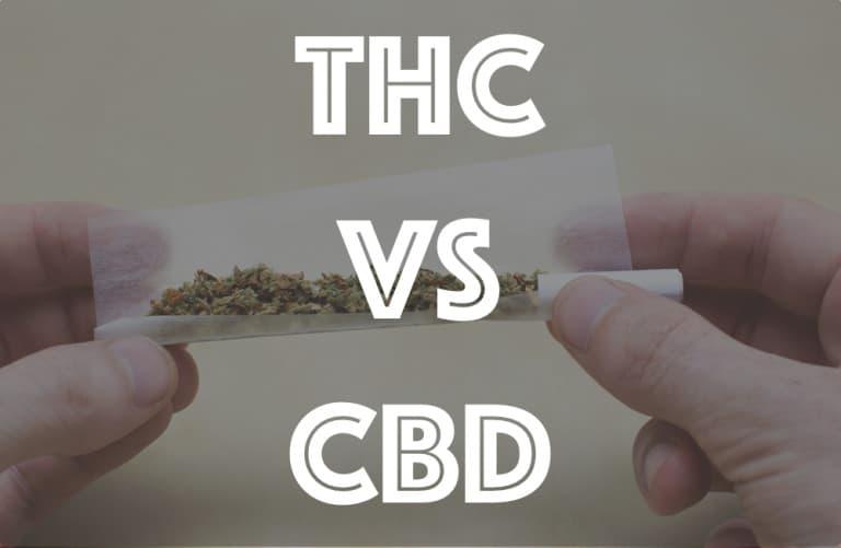 【 大麻:THC vs CBD 】その違いと効果や感じ方って何?