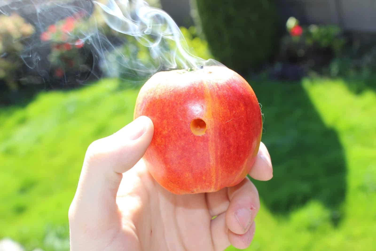 りんごを使って吸う!?【アップルパイプ】の作り方~煙草・大麻に~
