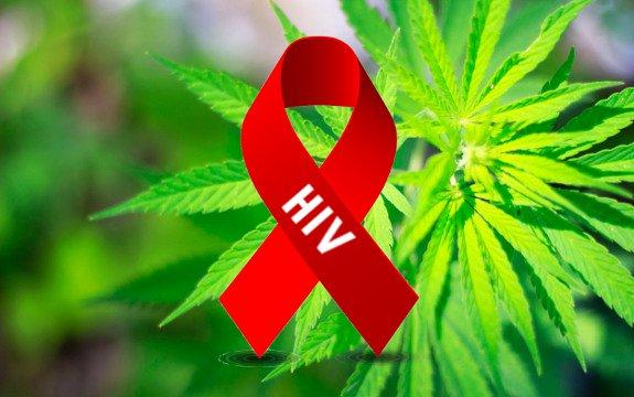 大麻とエイズ(HIV)「既に医療現場で使われている!?」