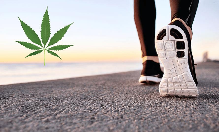 「カンナビス&エクササイズ」大麻と運動が良い3つの理由