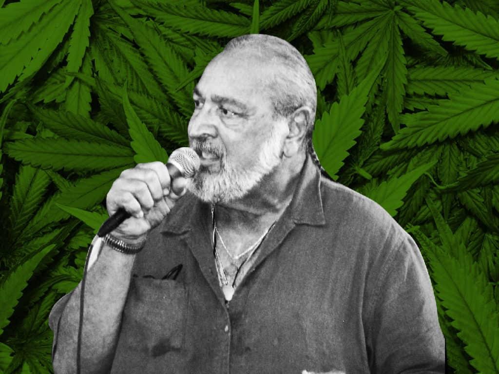 喘息と肺を守る!?サティバ系大麻「ジャック・ヘラー」