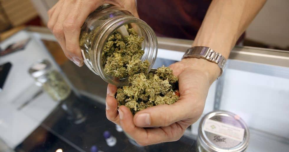 大麻業界で働く方法!?「大麻テンダーの仕事とは?」