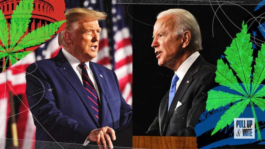 【2020年大統領選挙】大麻合法化への投票「トランプ vs バイデン」
