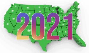 【2021年】大麻/マリファナ合法化ガイドーアメリカ全米編ー