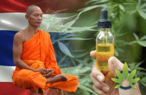 「僧侶が大麻のアドバイス!?」医療大麻国タイの【大麻オイル】