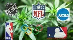 【スポーツ薬物検査と大麻】大麻okなスポーツ競技!?